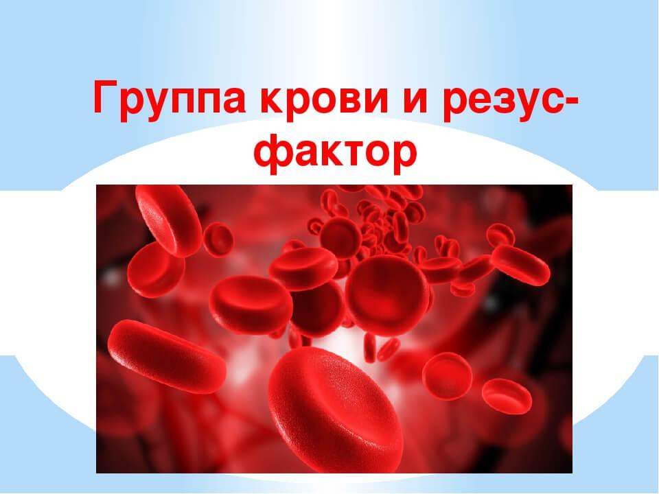 Фото:Стоимость анализа на группу и резус крови